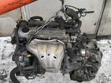 Двигатель 2az за 445 000 тг. в Алматы