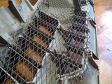 Решётка радиатора Pajero 3 за 12 000 тг. в Алматы – фото 2