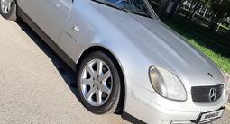 Mercedes-Benz SLK 230 2002 года за 3 000 000 тг. в Павлодар