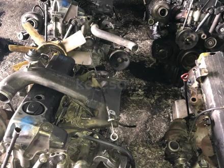 Контрактный двигатель OM662 SsangYong Rexton за 777 тг. в Алматы – фото 3