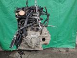 Двигатель Mazda LF 2.0 литра за 390 000 тг. в Алматы – фото 5
