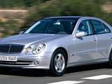 Стекло ФАРЫ Mercedes-BENZ E-Class w211 (2002 — 2009 Г. В.) за 14 600 тг. в Алматы – фото 2