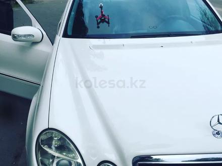Круглосуточно! Ремонт трещин! Ремонт скол на лобовом стекле на выезд в Алматы – фото 67
