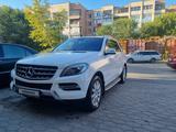 Mercedes-Benz ML 350 2013 года за 14 500 000 тг. в Караганда – фото 2