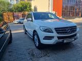 Mercedes-Benz ML 350 2013 года за 14 500 000 тг. в Караганда – фото 3