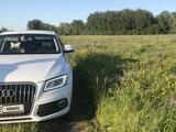 Audi Q5 2012 года за 9 200 000 тг. в Павлодар – фото 2