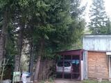 Дачу в лесу за селом тарханка в Усть-Каменогорск – фото 5