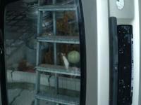 Задняя крышка багажника опель вектра а хетчбек за 30 000 тг. в Алматы