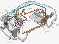 Профессиональный инжектор по ремонту топливной системы в Шымкент