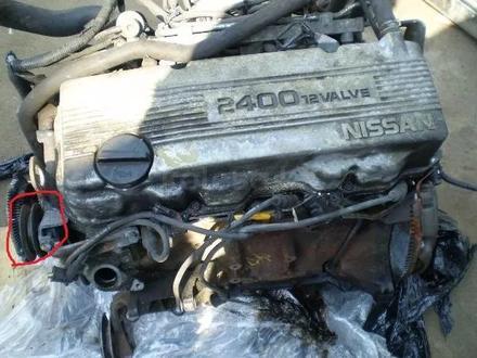 Kонтрактный двигатель (АКПП) Nissan Terrano Qd32, VG30, KA24, TD27 за 300 000 тг. в Алматы – фото 14