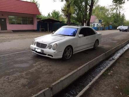 TUNING TEAM в Алматы – фото 5