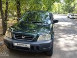 Honda CR-V 2000 года за 3 300 000 тг. в Алматы