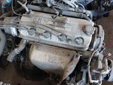 Двигателья на хонду акорд за 240 000 тг. в Шымкент – фото 5