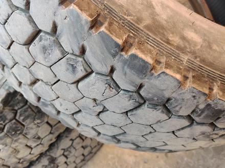 Шины кама 19.5 за 20 000 тг. в Нур-Султан (Астана) – фото 2