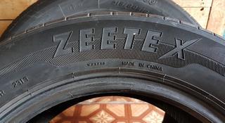 Две резины Zee Tex за 8 500 тг. в Павлодар