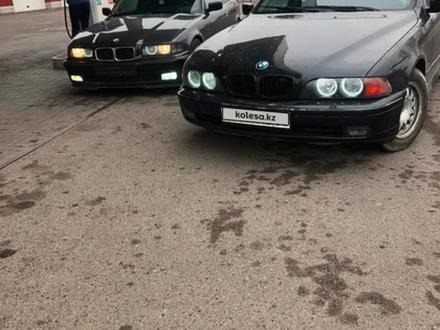 BMW 528 2000 года за 2 500 000 тг. в Алматы – фото 7