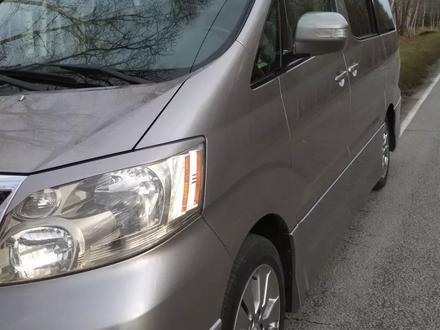 Toyota Alphard 2004 года за 6 000 000 тг. в Петропавловск – фото 3