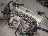 Двигатель Nissan Presage Ка24 за 170 000 тг. в Алматы – фото 3