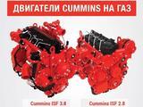 Запчасти на Cummins 2, 8 в Петропавловск