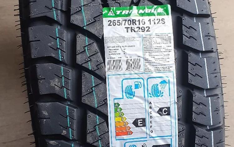TRIANGLE TR 292 за 31 000 тг. в Алматы