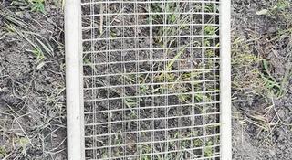 Сетка опель омега б от собак и тд за 10 000 тг. в Караганда