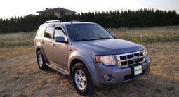 Ford Escape 2008 года за 6 800 000 тг. в Алматы – фото 2