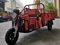 Peda  Бензиновый трицикл в Рассрочку на 1 год. 2020 года за 650 000 тг. в Алматы