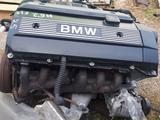 Двигатель на BMW E39 M52 2.5 за 350 000 тг. в Караганда – фото 5