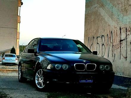 BMW 528 1997 года за 2 300 000 тг. в Тараз – фото 5