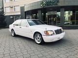Mercedes-Benz S 500 1996 года за 5 900 000 тг. в Петропавловск – фото 3
