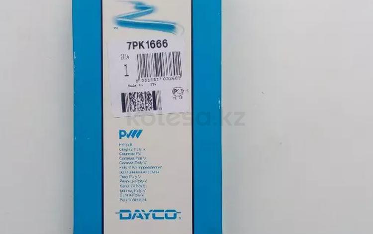 Приводной ремень BMW за 6 600 тг. в Нур-Султан (Астана)