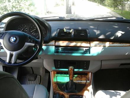 BMW X5 2003 года за 4 500 000 тг. в Алматы – фото 11