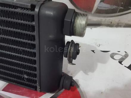 Радиатор масляного охлаждения на Mercedes w140 S за 30 268 тг. в Владивосток – фото 13