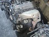 Двигатель Toyota Ipsum 2.0 Объём за 300 000 тг. в Алматы – фото 3