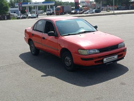 Toyota Corolla 1993 года за 980 000 тг. в Алматы – фото 5